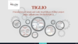 17. TIGLIO (Translations of Greek and Latin Inscriptions Online) project